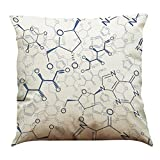 45cm*45cm Decorative Pillow Cases,Kingko® Mathematics Chemistry Subject Style Printed Linen Material Waist Throw Pillowcases Bedding Sofa Car Office Cushion Cover (F)