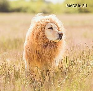 Costume de lion pour chiens - Crinière de lion pour grands chiens - À l'occasion du carnaval et d'Halloween - Avec une perruque
