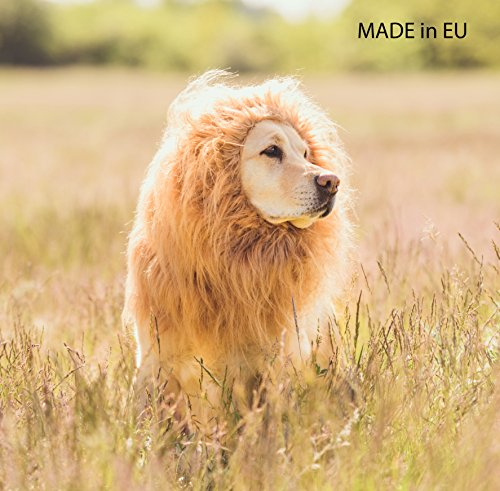 LEONES Hundekostüm - Löwenmähne für große Hunde für Fasching - Karneval- Halloween - Perücke - Kostüm - - Ideen Für Hunde Kostüm