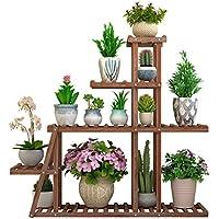 Amazon.es: expositor de plantas - Soportes / Accesorios: Jardín