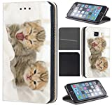 CoverHeld Samsung Galaxy Grand Prime Hülle Premium Flipcover Schutzhülle Flip Case Motiv (1423 Katze Katzen Baby Grau Kätzchen)