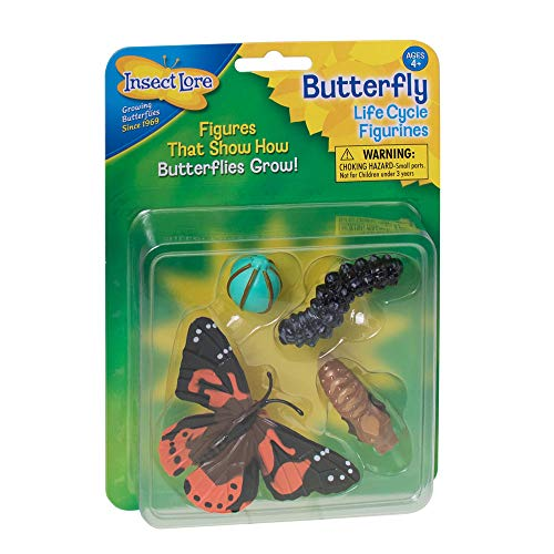 Insect Lore - Playset (4760)