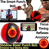 Shadow Boxer Punch Ball
