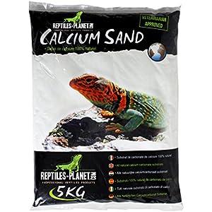 Reptiles Planet Katzenstreu Sand Calcium-Terrarium Kalzium Sand Sechura Natural 5kg