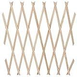 Jago Pflanzengitter Holzgitter Rankhilfe Rankgitter für den Garten oder Balkon aus Holz mit Größen- und Setwahl