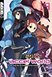 Accel World - Novel 19