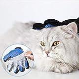 GOLDSTA Fellpflegehandschuh für Katzen Hunde   Fellhandschuh-Pflegehandschuhe   Katzenhandschuh   Katzenbürste inkl. Postkarte mit Katzenmotiv  Geschenkverpackung verfügbar  - 6