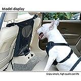 Hundenetz Auto Sicherheitsnetz Trennnetz Zwischen Haustier Rücksitz Barriere für Hunde, Geeignet für die meisten Autos und SUVs, Schwarz, Backseat Barrier