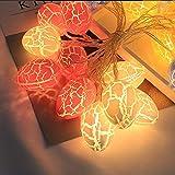 Prevently Lichterkette Strombetrieben,Batterienbetrieben mit LED Lichterkette Innen 1,5 m 10 Lichter für Party Weihnachten Hochzeit Feier Garten Terrasse Zimmerdekoration (Mehrfarbig)