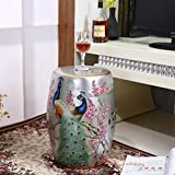 Shoe stool LUYIASI- Handbemalte Blumen und Vögel Chinesische Hocker Keramik Drum Hocker Dressing-Bänke Runde Hügel Hocker (32x45cm) (Farbe : Silber)