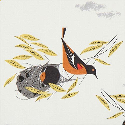Baumwollpopeline mit Vögeln, aus den USA, Kollektion: Bird Architects, Design: Charley Harper -
