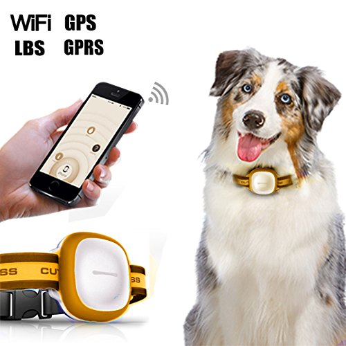 dax-hub-mini-gps-tracker-for-small-pet-dog-puppy-cat-fashion-web-wifi-enabled-qr-code-gprs-tracer-lo