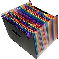 Carpeta de archivo desplegable 13 bolsillos, Organizador de documentos A4 de color púrpura Acordeón, D