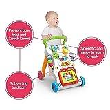 Hi-Widze Baby Learning Musical Anti-Skid Walker (Multicolor) (Multi)