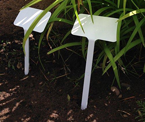 Yuzet-100testa Etichette pianta fiore grande superficie di scrittura, 19cm