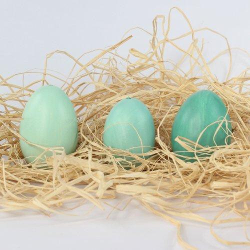 Uovo di Pasqua, vera soffiato oche uova per Oster nido Pasqua, 12 Box, assortiti in 3 diverse tonalità colori, petrol