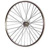 Taylor Wheels 28 Zoll Hinterrad Westwood mit Rücktritt - Hollandrad (635)
