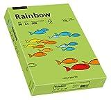 Papyrus 88042654 Druckerpapier Rainbow 80 g/m², A3 500 Blatt grün