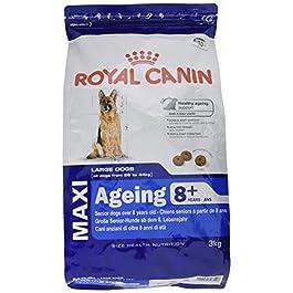 Royal Canin – Royal Canin Maxi Ageing 8+
