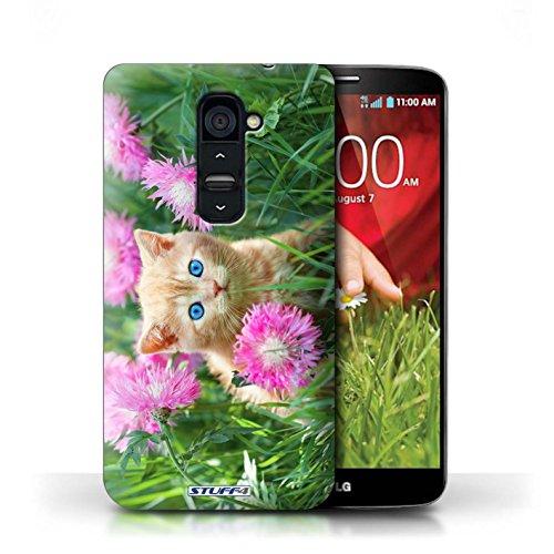 Kobalt® Imprimé Etui / Coque pour LG G2 / Miroir conception / Série Chatons mignons Jardin