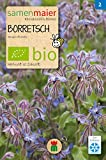 BIO Borretsch (Borago officinalis)