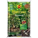 COMPO SANA® Bonsaierde, hochwertige Spezialerde für alle Zimmer- und Freilandbonsai, 5 L
