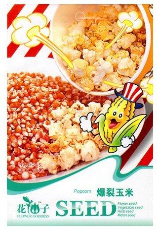 30-semi-di-mais-corn-grano-granturco-per-popcorn-zeamaysal-evertasturt-gran-turco-per-pop-corn-in-co