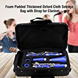Dilwe Clarinet Bag, Foam Padded Thickened Oxford Cloth Sotrage Bag with Strap for Clarinet