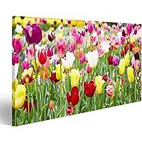 Cuadro Cuadros Impresión sobre lienzo - Formato Grande - Cuadros modernos Flores de primavera Tulipanes de