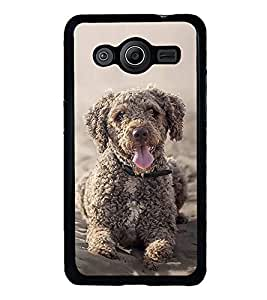 FUSON Toy Poodle Sitting Dog Designer Back Case Cover for Samsung Galaxy Core 2 G355H :: Samsung Galaxy Core Ii :: Samsung Galaxy Core 2 Dual