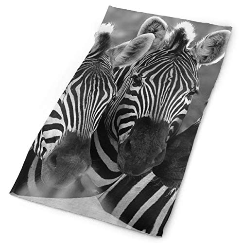 Zebra Horse Stirnband Men Women Headwrap Magic Head Scarf Bandana Headwear Neck Scarf Microfiber Hood Unique Headdress Wristband Face Mask Neck Gaiter