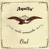 Aquila AQ O\'NN 13O New Nylgut Oud Kit (11de string, Arabic Tuning, Light Tension)