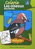 Colorie les oiseaux des forêts