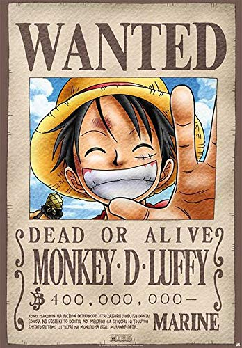 One Piece Wanted Póster Standard