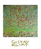 Germanposters Gustav Klimt Apfelbaum Poster Bild Kunstdruck 30x24cm Ohne Rahmen