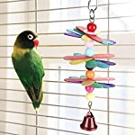 fdit pet bird parrot colorful beads bell toys chewing climb toy swing cage accessory decor pendant Fdit Pet Bird Parrot Colorful Beads Bell Toys Chewing Climb Toy Swing Cage Accessory Decor Pendant 51xfSzhaLqL
