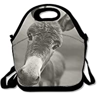 Preisvergleich für Lunch Tote Esel Lunch-Boxen Lunchpaket Handtasche Lebensmittel Aufbewahrung passend für Schule Reisen Arbeit Outdoor