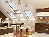 FAKRO Dachfenster Schwingfenster Aus Kunststoff PTP-V U5 66 x 98