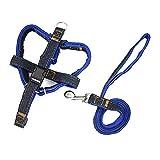 XDYFF Haustier Weste Harness für Hunde Denim BH-Träger für die Brust und Schultergurt für Spaziergang mit dem Hund,Blue,M