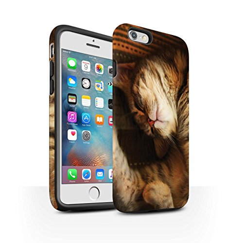 Officiel Elena Dudina Coque / Matte Robuste Antichoc Etui pour Apple iPhone 6+/Plus 5.5 / Félins/Léopard/Guerrier Design / Les Animaux Collection Endormi/Tigré Chat