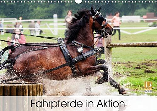 Fahrpferde in Aktion (Wandkalender 2020 DIN A3 quer): Fahrpferde im Trainingsgelände mit verschiedenen Fahr-Hindernissen. (Monatskalender, 14 Seiten ) (CALVENDO Tiere)