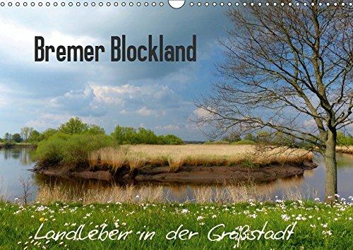 Bremer Blockland - Landleben in der Großstadt (Wandkalender 2019 DIN A3 quer): Kaum zu glauben, das Blockland ist ein Ortsteil der Hansestadt Bremen. ... (Monatskalender, 14 Seiten ) (CALVENDO Natur)