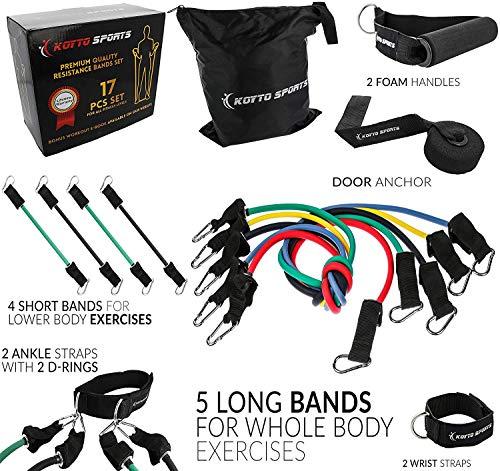 Widerstand Bands-17Stück Set von 5lang Übungsbänder und 4kurze Knöchel Bands mit Tür Anker, 2Handgelenk Schultergurte, 2Ankle Straps und E-Book manuell -