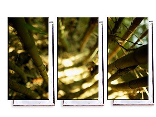 Bambus Wald - Dreiteiler (120x80 cm) - Bilder & Kunstdrucke fertig auf Leinwand aufgespannt und in erstklassiger Druckqualität - Insel Bambus-rahmen