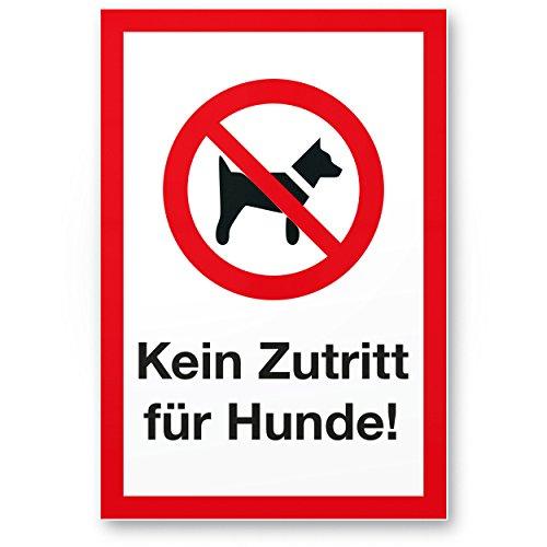 ᐅ Hund Verboten Kaufen Test Und Vergleich Der Bestseller