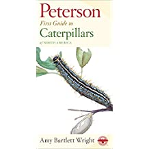 First Guide to Caterpillars (Peterson First Guides)