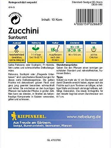 Kiepenkerl Zucchini Sunburst