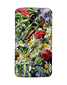 Mobifry Back case cover for Motorola Google Nexus 6 Mobile ( Printed design)