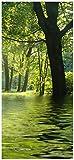 posterdepot Türtapete Türposter Idyllischer See im Wald bei Sonnenschein - Größe 93 x 205 cm, 1 Stück, ktt0531