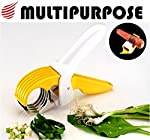 MULTI CUTTER that reduces the workload and makes this tricky task easy. Blades are Made of HIGH grade SS202 stainless steel ANTI-CORROSIVE material for Healthier Future, the blades are sharp and chop the VEGETABLES AND FRUITS finely. The outer body i...